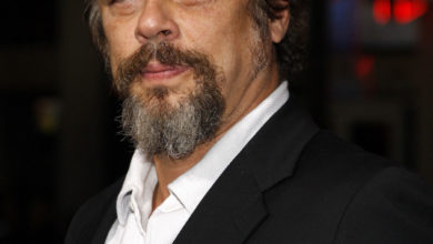 Photo of Benicio Del Toro Biography,Weight,Height,Body,Career,Age and More